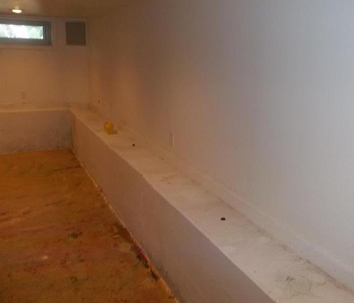 Mold Removal in Kendall County Before