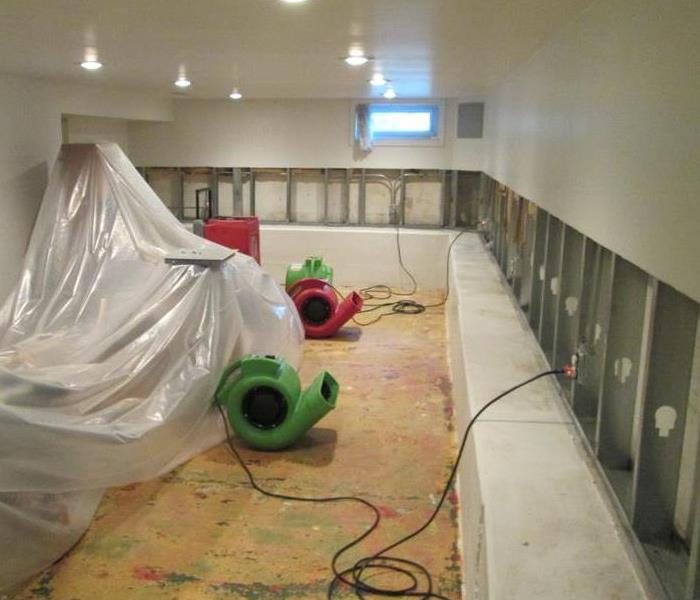 Mold Removal in Kendall County After