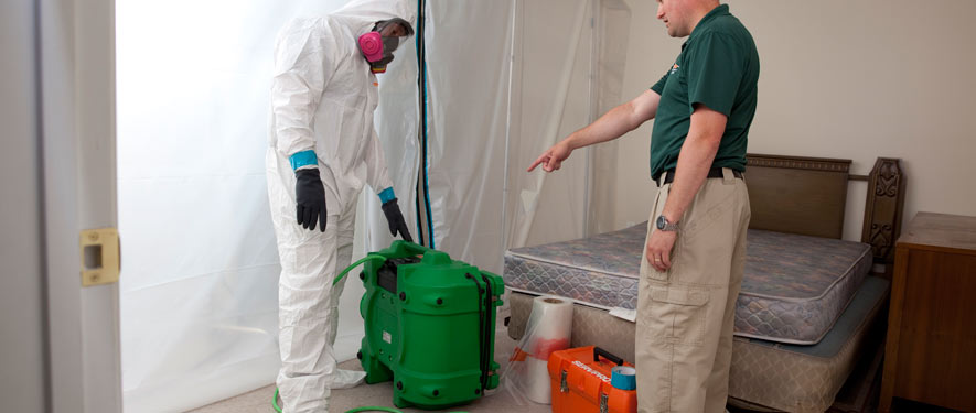 Oswego, IL mold removal process